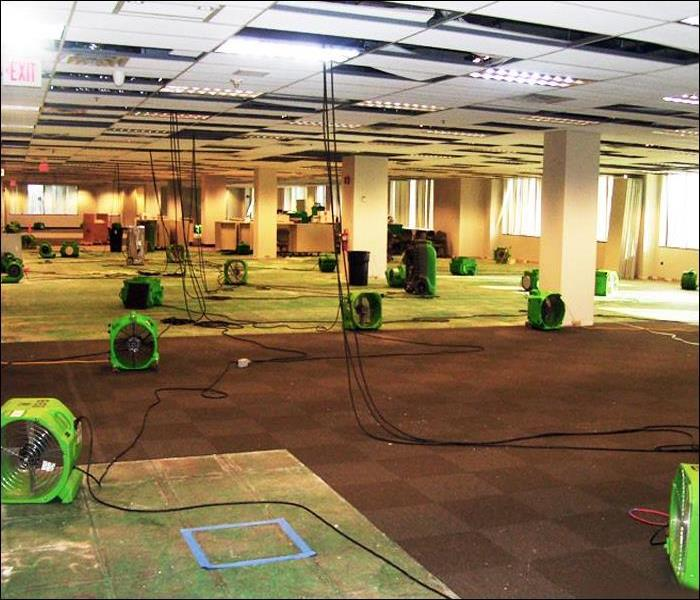 Dry-out to Prevent Mold Growth in Commercial Office Space after Water Damage, Sussex County, NJ