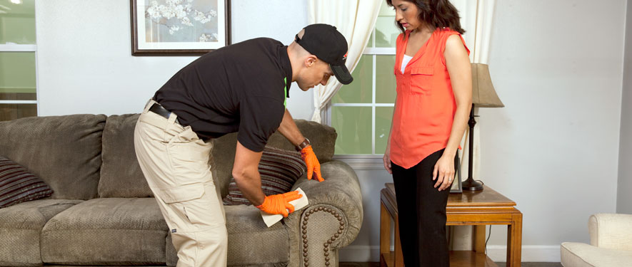 Wayne, NJ carpet upholstery cleaning