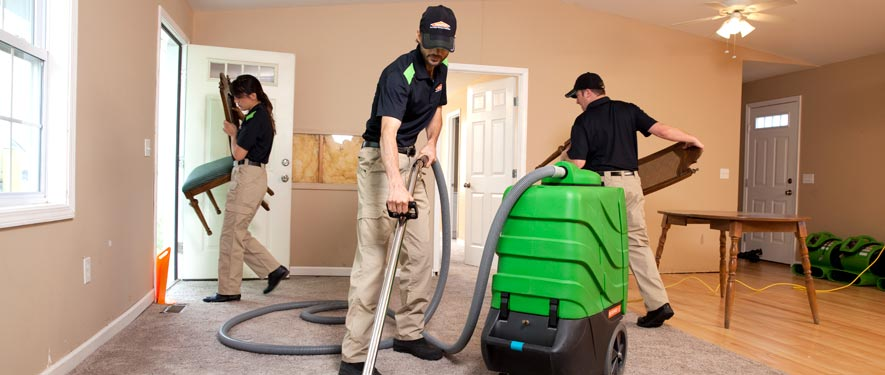 Wayne, NJ cleaning services